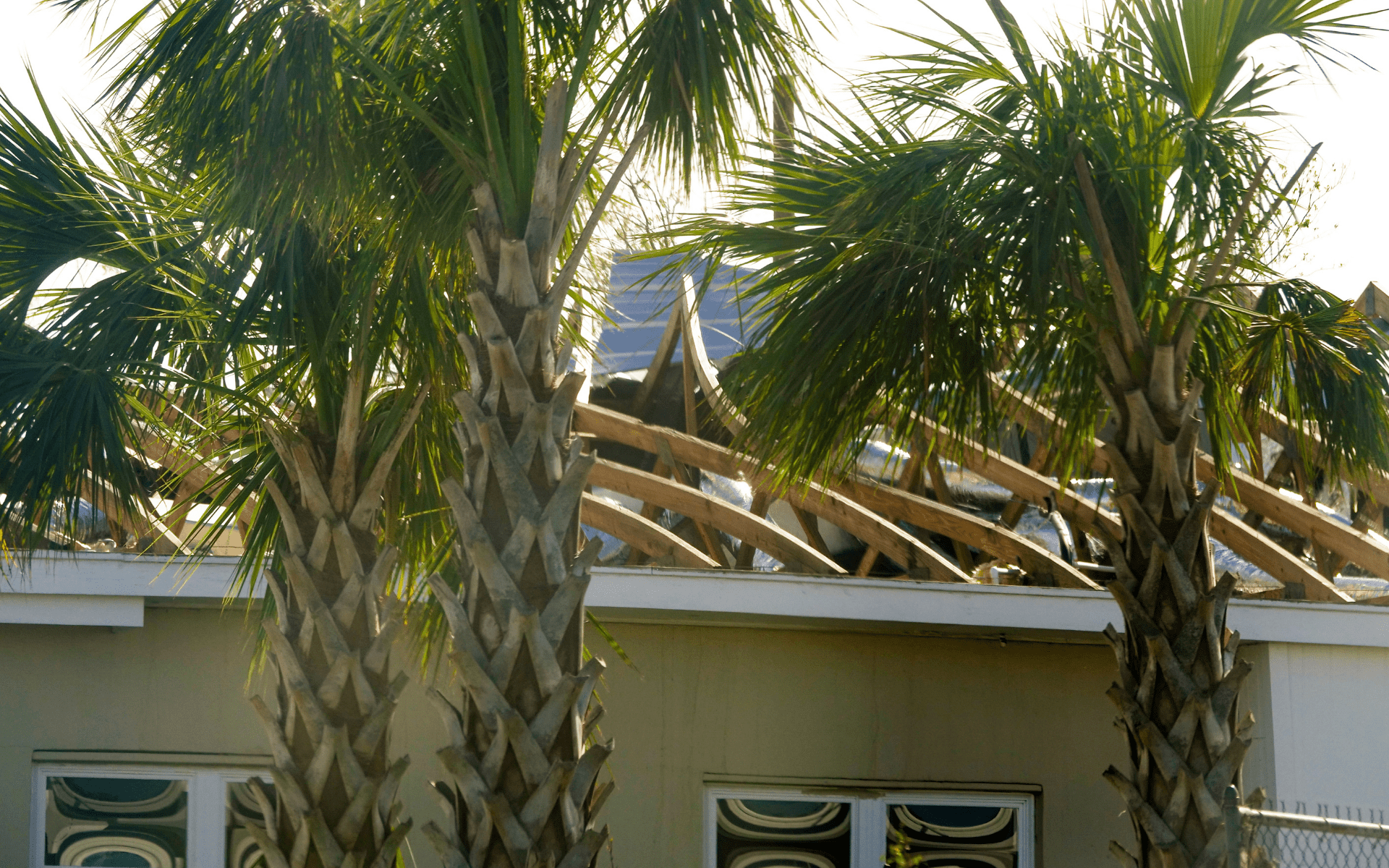 Different Types Of Roof Damage in Miami